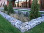 Bioretention basin