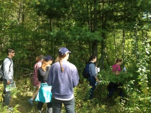 Volunteers walk through the HEEP trail