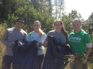 Volunteers fill bags with the invasive plants