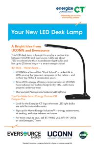 lamp flyer